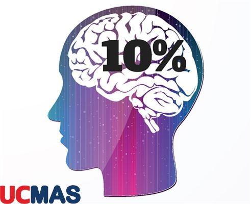 Những sai lầm ít ai biết về bộ não người